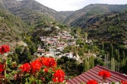 Новости рынка → Кипр: подъем на рынке недвижимости в 2015 году