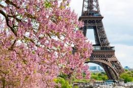 Новости рынка → Париж - самый дорогой рынок для сдачи недвижимости в аренду