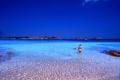 Италия: знамениты остров Буделли выставили на продажу