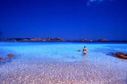 Новости рынка → Италия: знамениты остров Буделли выставили на продажу