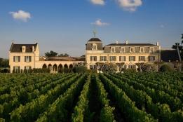 Новости рынка → Россияне скупают виноградники Европы