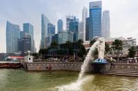 Сингапур. Процедура покупки