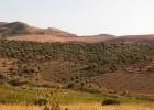 Производство на Сицилии