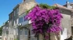 Красивый дом на полуострове Пелешац