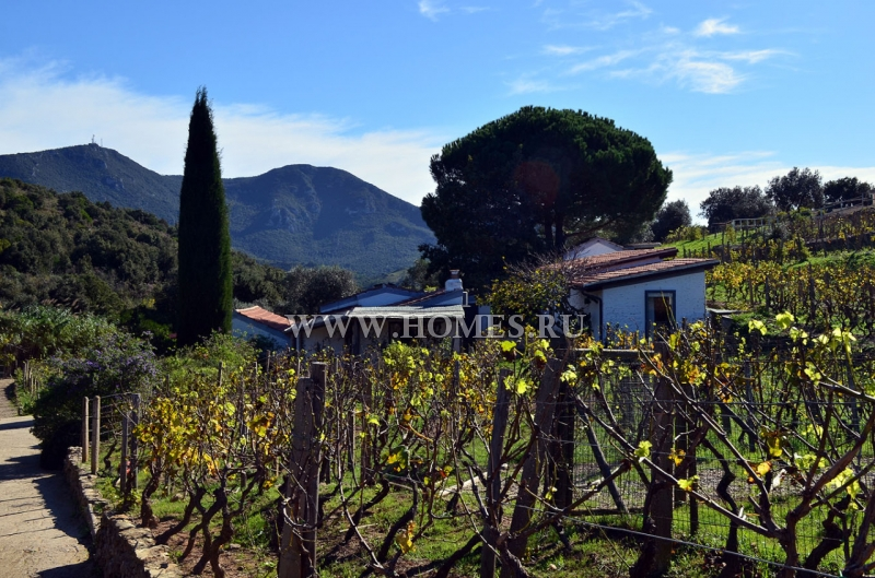 Великолепная вилла в Тоскане