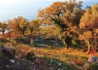 Прекрасный земельный участок в Режевичи