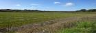 Участок земли в Алькасер-ду-Саль