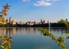 Изумительный пентхаус на Манхэттене