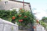 Чудесный исторический дом в Перасте