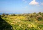 Чудесные виллы в Пафосе, Кипр
