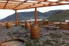 Превосходная винодельня на Тенерифе