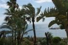 Престижная квартира на пляже Пуэрто Банус