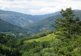 Участок в Тоскане