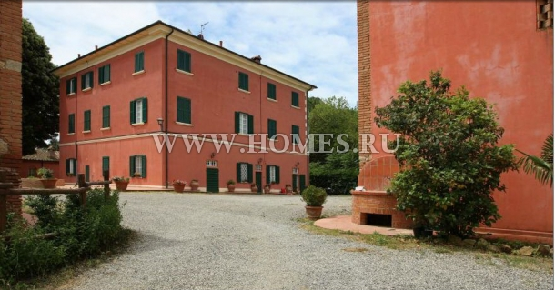 Производство вина и оливкового масла в Тоскане