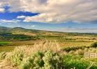 Агрокомплекс на Сардинии
