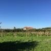 Веллетри, ферма на холмах