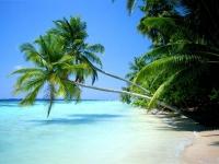 Сент-Китс и Невис. Национальные особенности