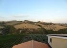 Виноградник в Абруццо