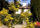 Симпатичный дом в пригороде Флоренции