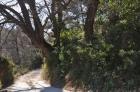 Красивая вилла в Бандоль, Лазурный берег