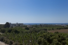 Новые виллы в Пафосе