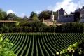 Винный бизнес во Франции