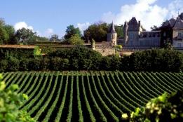 Аналитика → Винный бизнес во Франции