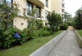 Великолепные апартаменты на севере Португалии