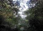 Замечательный участок в Юрмале, Булдури