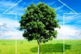 Новости рынка → Инвесторы из Европы задумываются об экологичности жилья