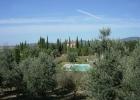Прекрасная вилла с виноградником в Тоскане