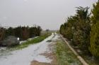 Великолепная вилла в пригороде Салоников