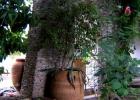 Великолепный коттедж в Аттике