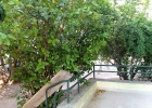 Светлый коттедж в Афинах