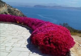 Очаровательная вилла в Восточном Пелопоннесе