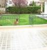 Две очаровательные виллы в Салоники