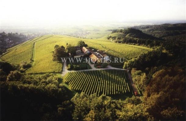 Превосходный особняк с виноградником в Баден-Бадене
